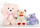 Foto teddyberen