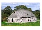 Foto Viking huis