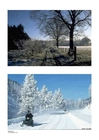 Foto Winter 1