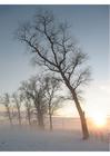 Foto winterlandschap