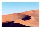 Foto woestijn