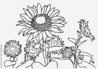Kleurplaat zonnebloemen