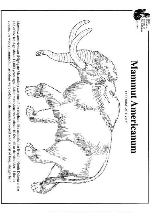 kleurplaat amerikaanse mammoet afb 7956