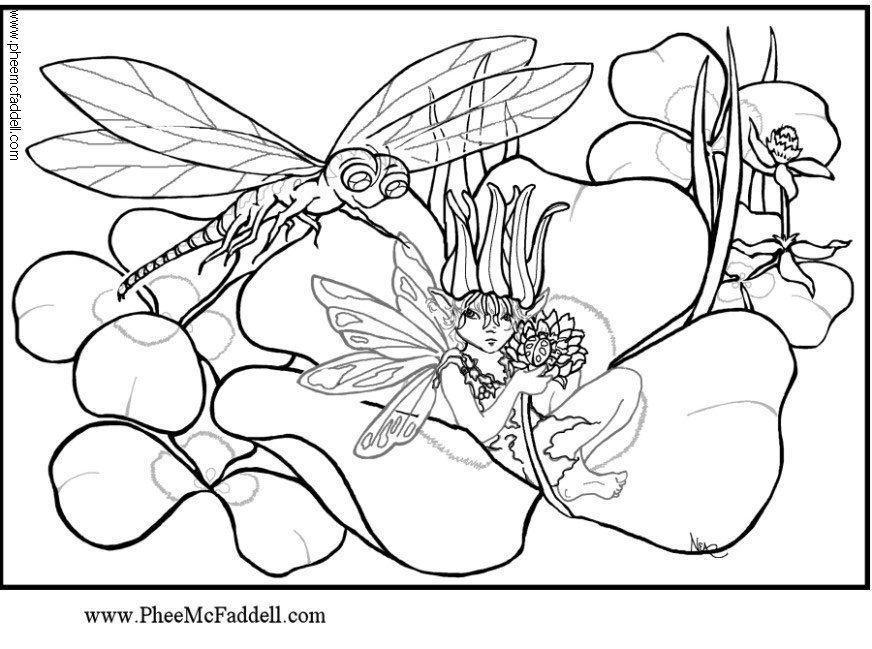 kleurplaat libelle gratis kleurplaten om te printen  afb