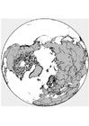 Kleurplaat Noordpool