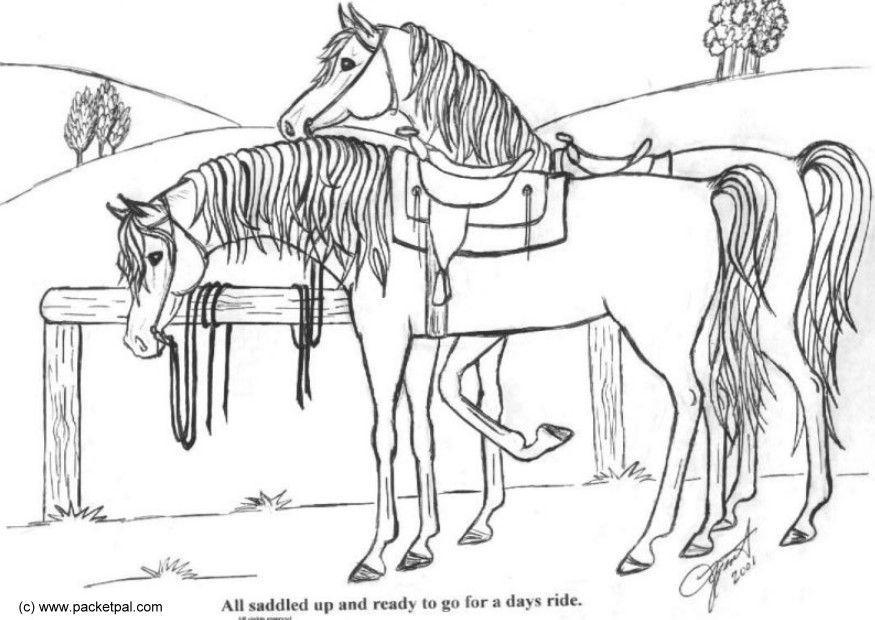 Kleurplaten Paarden Springen Kleurplaat Opgezadeld Afb 6088