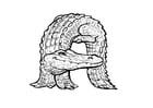 Kleurplaat a-alligator