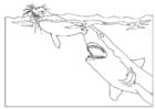Kleurplaat aanval haai