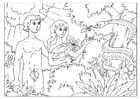 Kleurplaat Adam en Eva