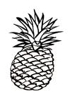 Kleurplaat ananas