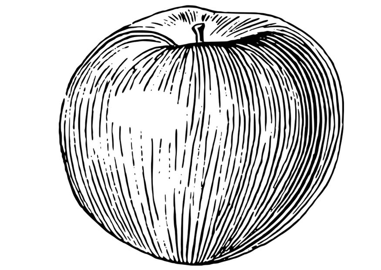 Kleurplaat Appel Afb 18653
