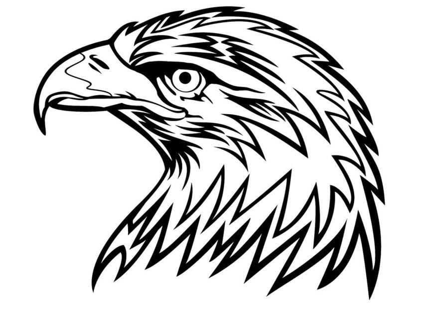 Eagle Head Coloring Page