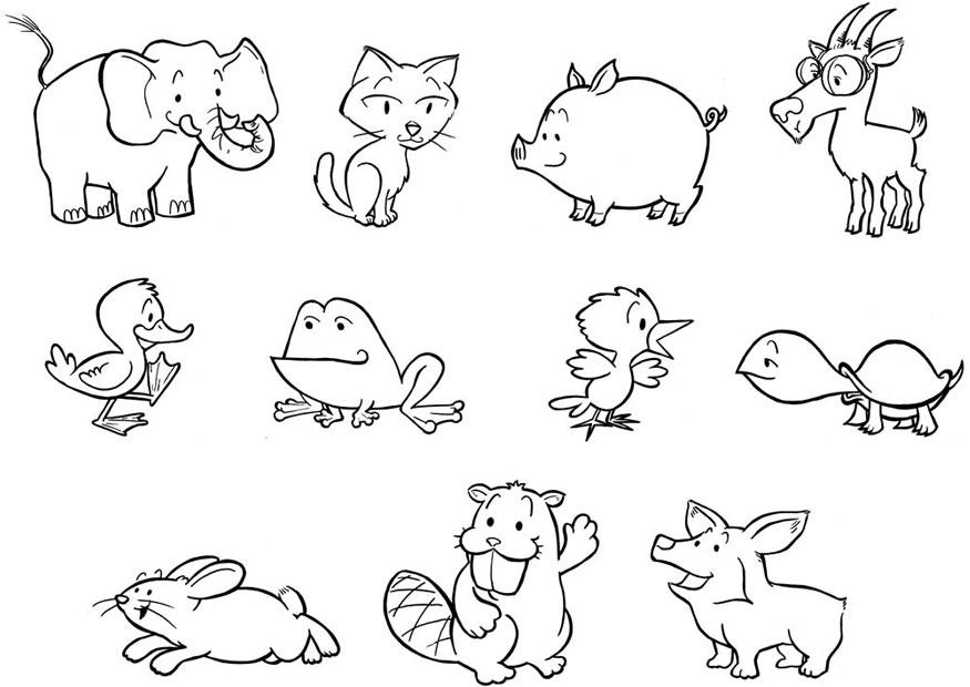 Line Drawing Pet Animals : Kleurplaat baby dieren afb