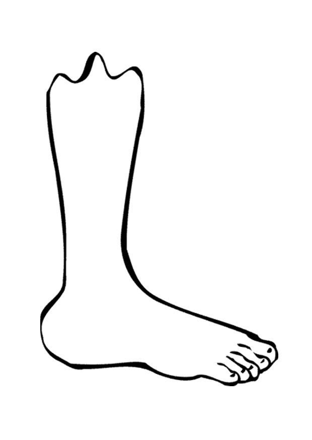 kleurplaat been voet afb 9521