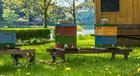 Kleurplaat bijenkasten