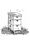 Kleurplaat bijenkorf