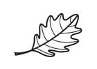 Kleurplaat blad eik