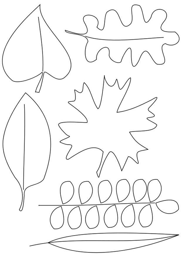 Afbeelding Egel Kleurplaat Kleurplaat Bladeren Gratis Kleurplaten Om Te Printen