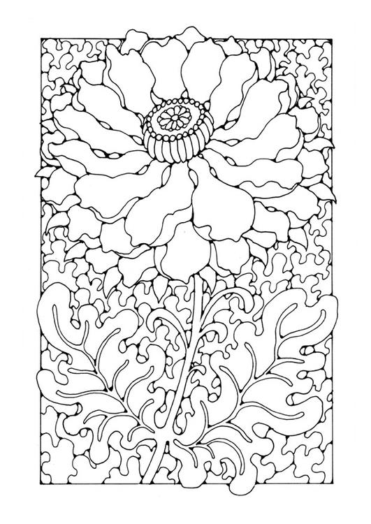 Kleurplaten Bloemen En Planten.Kleurplaat Bloem Gratis Kleurplaten Om Te Printen