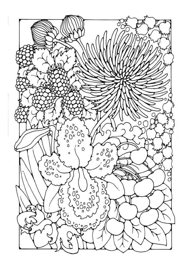 Kleurplaat bloemen Afb 27747
