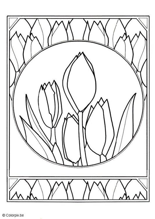 Kleurplaten Bloemen Tulpen.Kleurplaat Tulpen Afb 5659