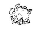 Kleurplaat bloemkool
