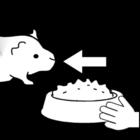 Kleurplaat cavia - eten geven