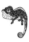 Kleurplaat chameleon