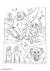 Kleurplaat chimpansee