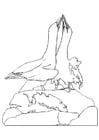 Kleurplaat dansende Jan-van-Gents