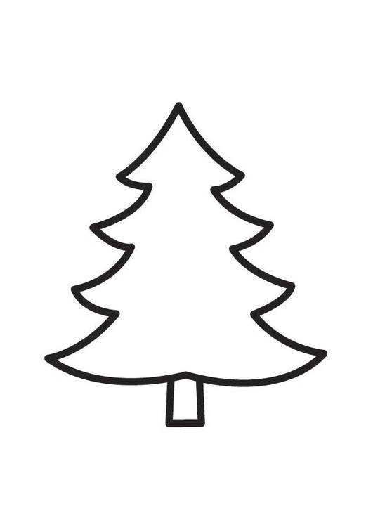 kleurplaat denneboom gratis kleurplaten om te printen