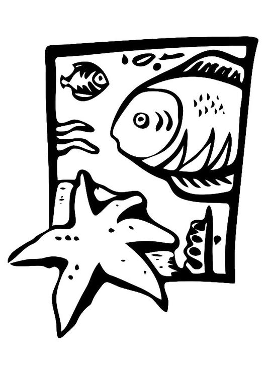 Kleurplaten Dieren In De Zee.Kleurplaat Dieren In Zee Gratis Kleurplaten Om Te Printen