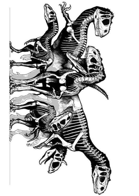 Kleurplaten Dino Skeletten.Kleurplaat Groep Dinosaurussen Skeletten Gratis