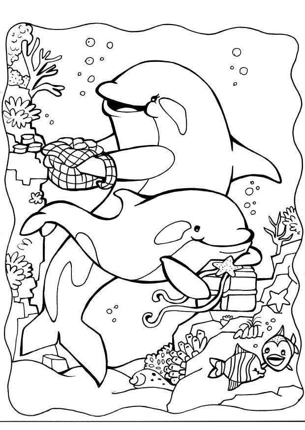 Orka Kleurplaat Kleurplaat Dolfijnen 2 Gratis Kleurplaten Om Te Printen