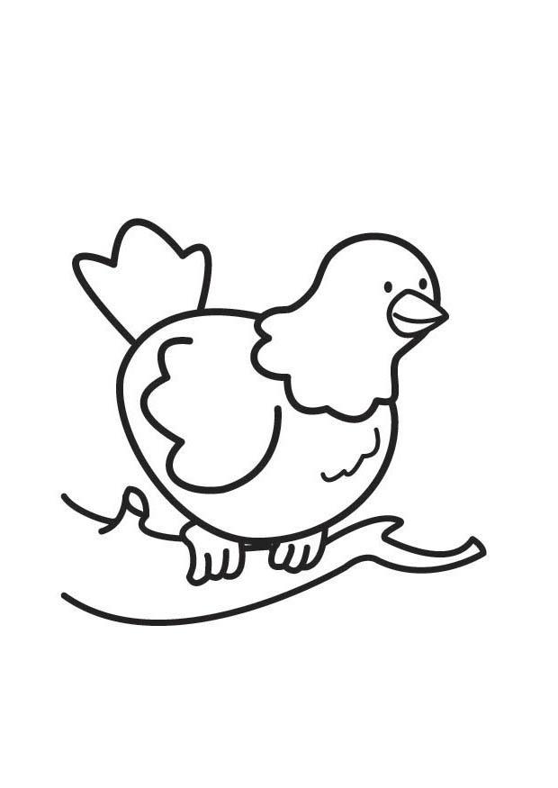 Afbeelding Vogel Kleurplaat Kleurplaat Duif Afb 17820