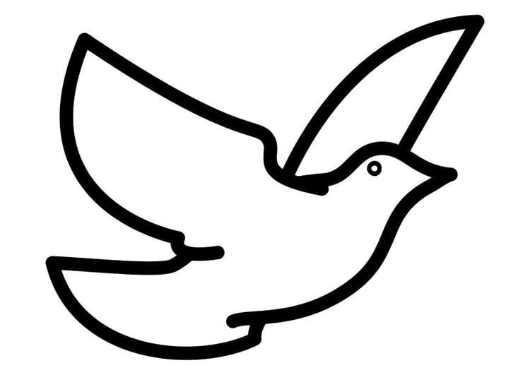 Kleurplaten Vliegende Vogels.Kleurplaat Duif Afb 10310 Images