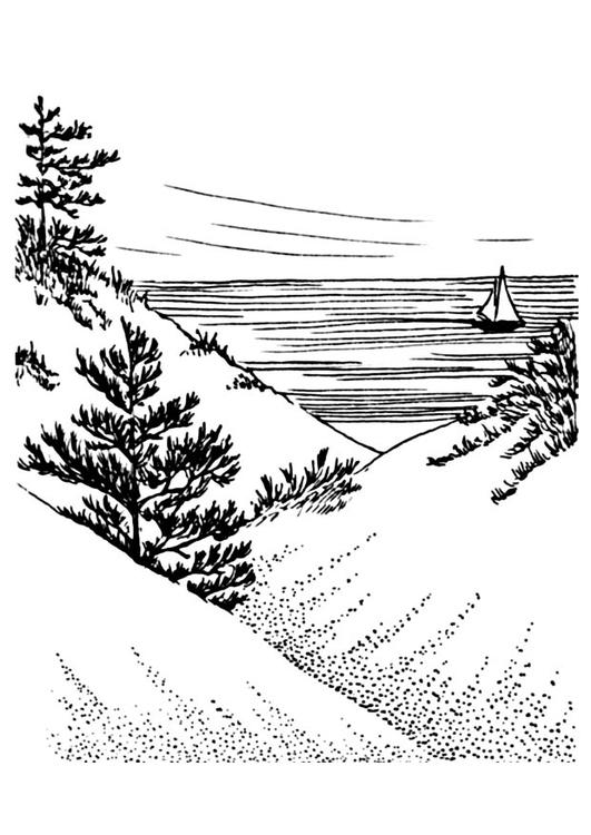 Kleurplaat Duinen Afb 18950 Images