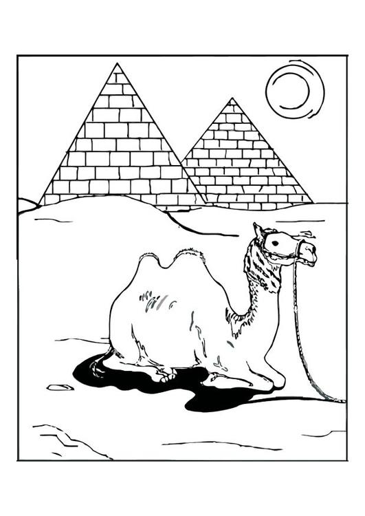 kleurplaat egypte afb 12540