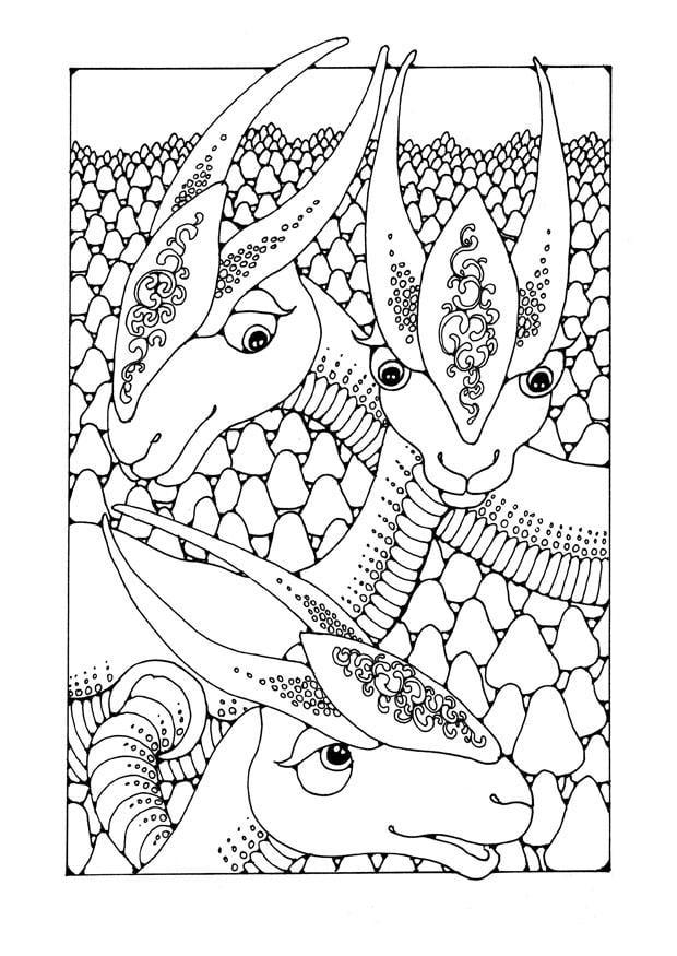 kleurplaten fantasie dieren