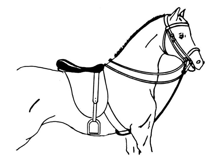 Kleurplaat Gezadeld Paard Afb 18896