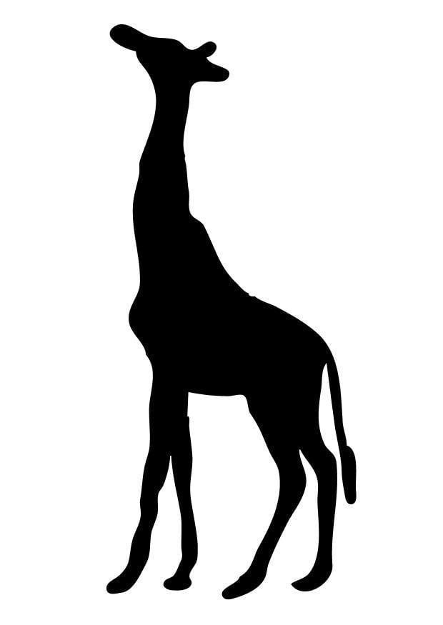 Kleurplaat Giraf Afb 10195