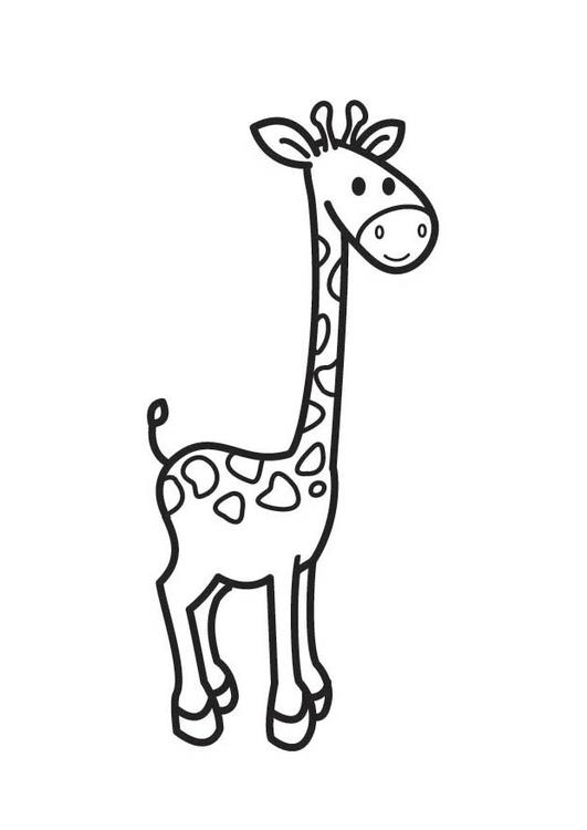 Kleurplaat giraf afb 17684 for Immagini giraffa per bambini
