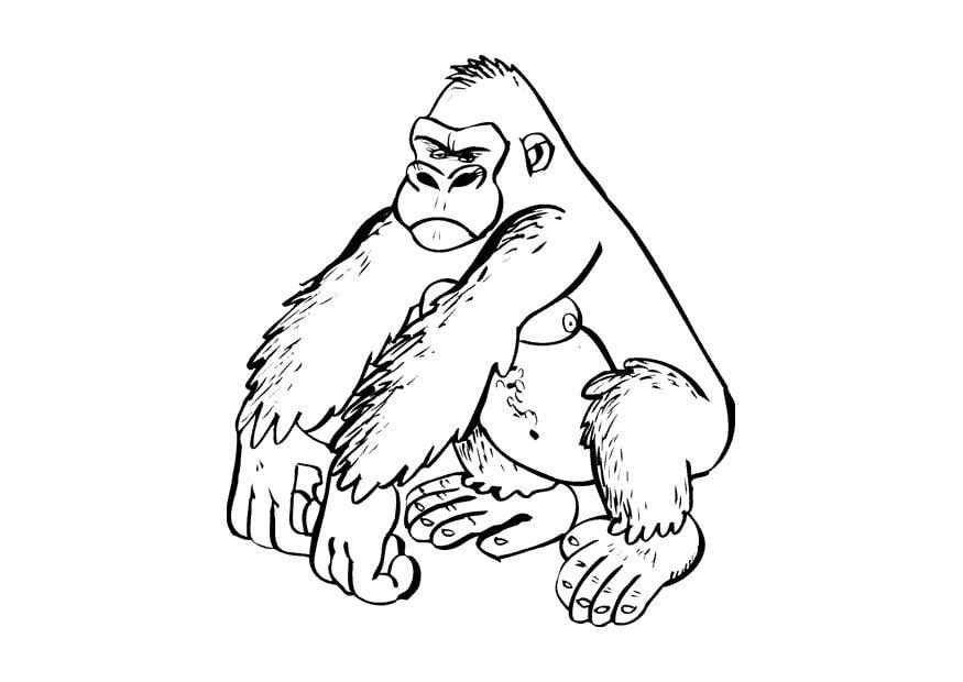 Kleurplaten Dieren In Het Wild Kleurplaat Gorilla Afb 9682