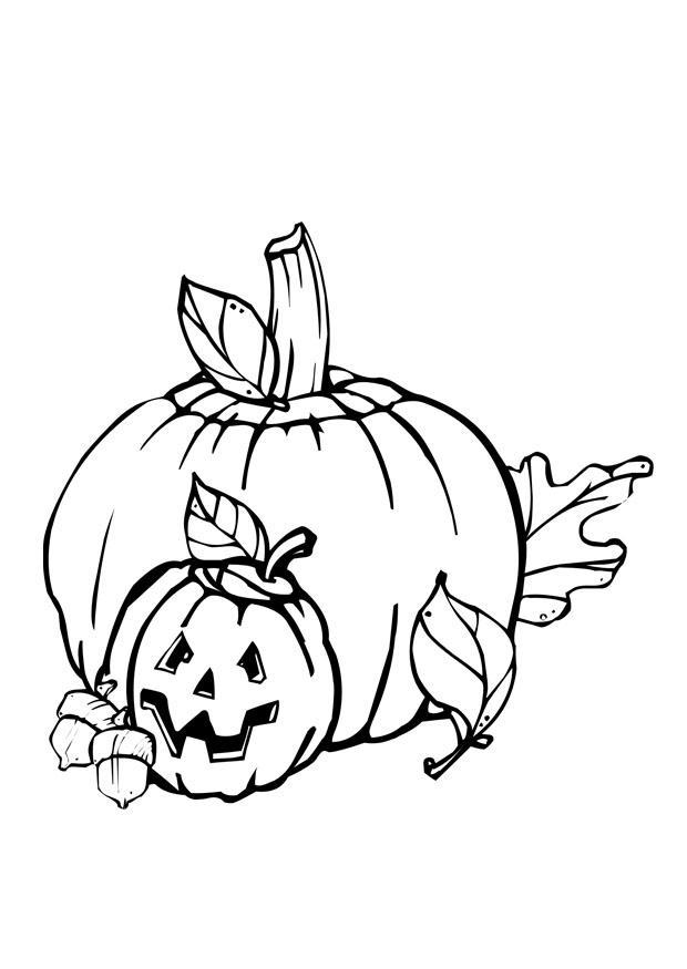 Kleurplaat Halloween Afb 28916 Images