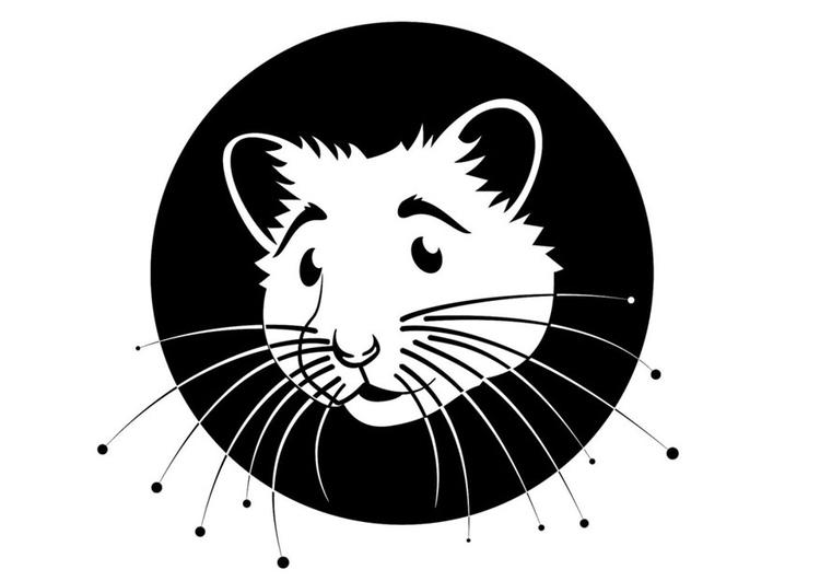Kleurplaat Hamster Afb 24671