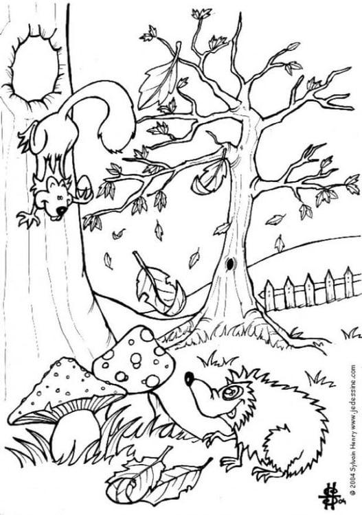 Paarden Kleurplaat Online Kleurplaat Herfst Egel En Eekhoorn Gratis Kleurplaten