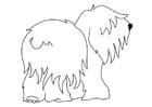 Kleurplaat hond - bobtail