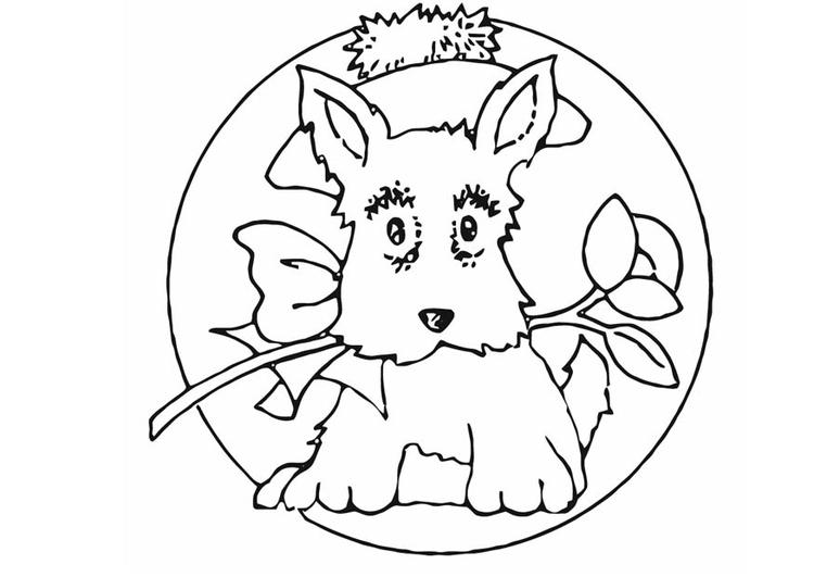 kleurplaat hondje afb 16589