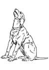 Kleurplaat huilende hond