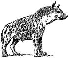 Kleurplaat hyena